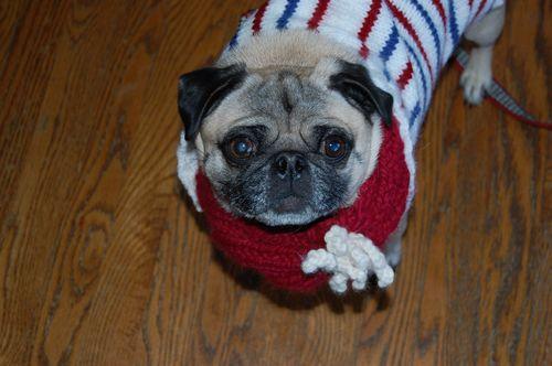 Infinitiy scarf